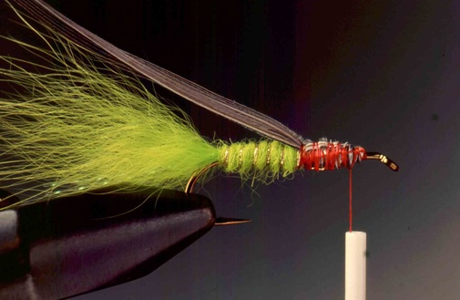 Chartreuse Streamer Nymph 05