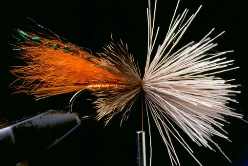 Orange Muddler Minnow 06