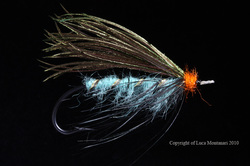 Beauly Snow Fly